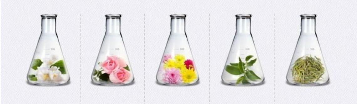 Fermented-Skincare-the-Latest-Korean-Skincare-Trend